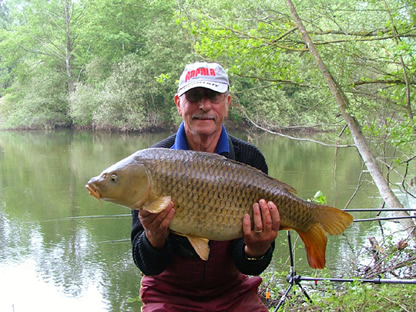 les with common carp